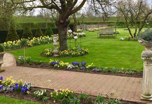 Open tuin 4 juli Schettereind (Limburg) afgelast