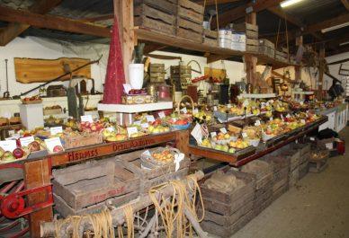 Jaarlijkse Fruitshow 'Verleden tot Heden' in Doesburg