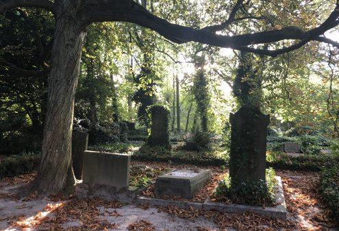 Tuin van de maand oktober 2021: Huis te Vraag, Amsterdam