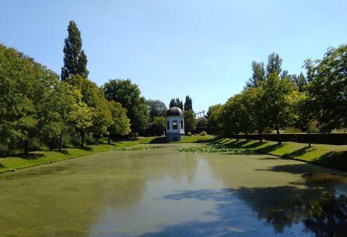 Tuin van de maand juni 2021: Arboretum Oudenbosch