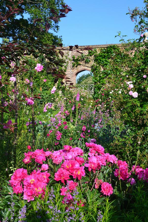 nazomeren-met-vitas-rozen