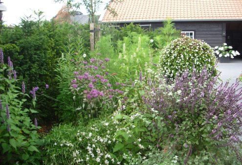 Tuin van de maand mei 2021: Tuin van Jan en Dietje Boeschoten, Markelo